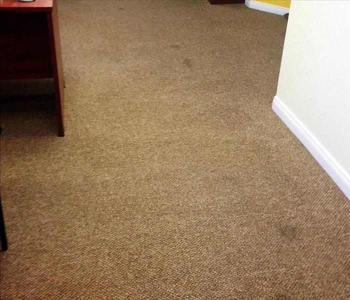 Insurance Agency Carpet Cleaning in Riverside CA. Before
