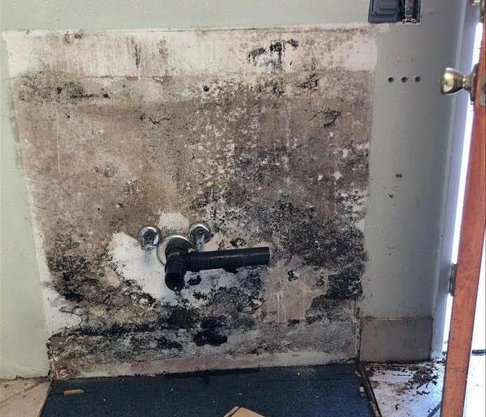 wall behind a sink shows evidence of black speckled mold.