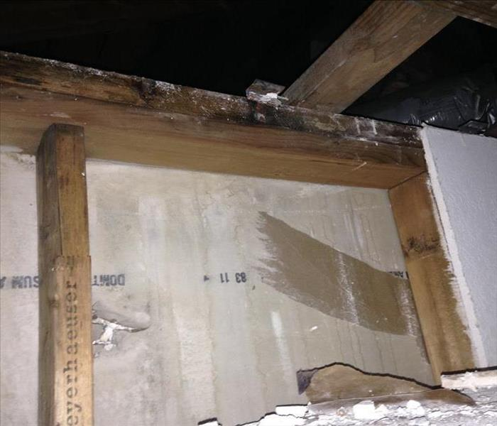 Mold Remediation Mold Damage can Ruin your Home's Framing