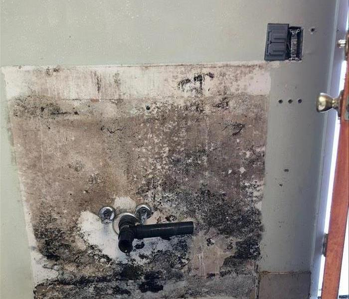 Mold Remediation The Key to Mold is Moisture Control from our friends at EPA.gov