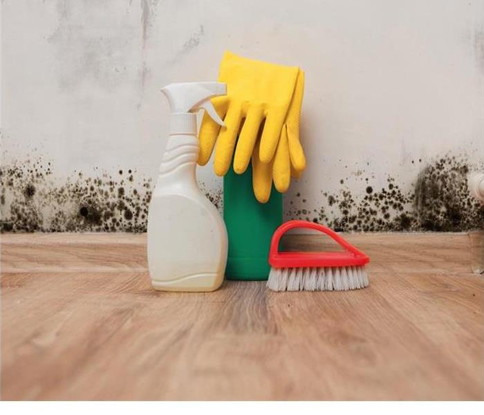Cleaning Summer guests?  Need to clean your house?  Here are some Tips