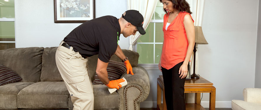 Riverside, CA carpet upholstery cleaning